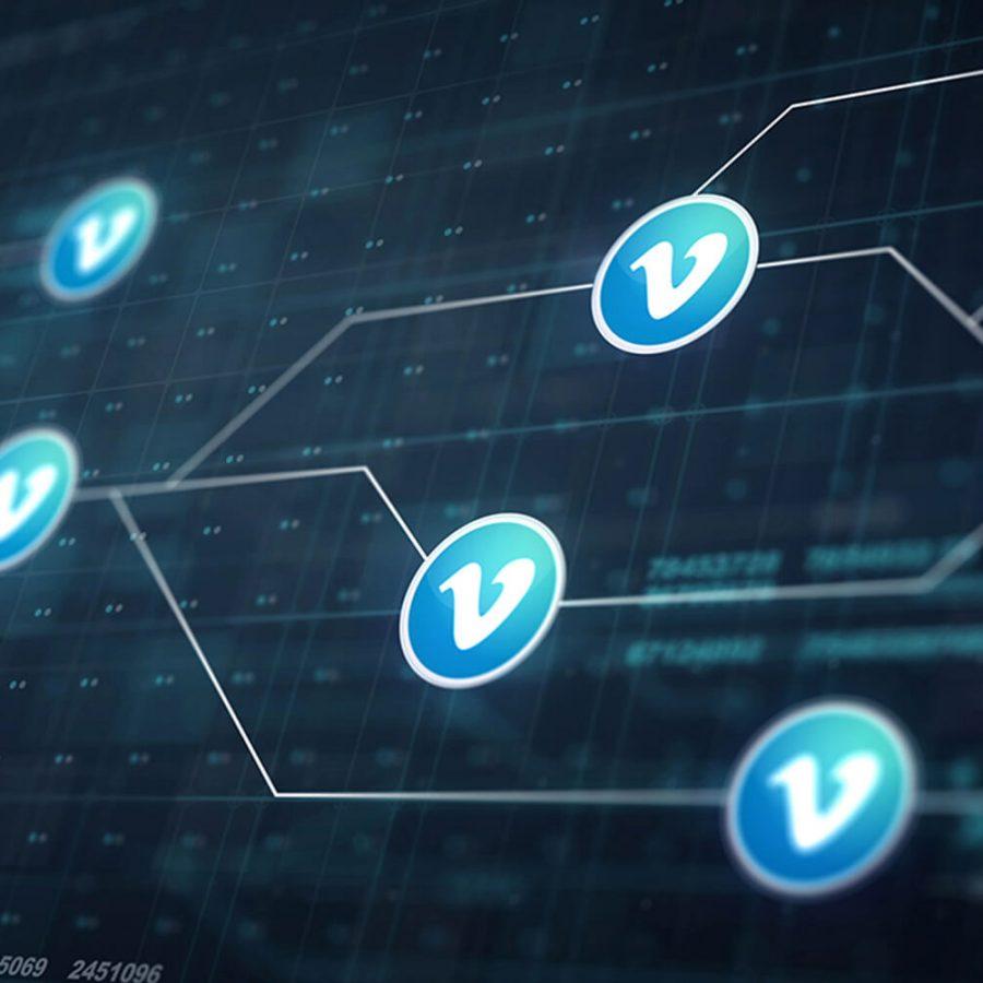V_Network_t